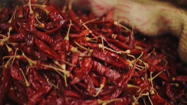 red dried chillies in a sack in kochi, kerala, india - closeup shot - chili schote stock-videos und b-roll-filmmaterial