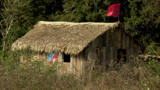 a red flag waves on the thatched roof of a hut in chile. available in hd. - thatched roof stock videos and b-roll footage