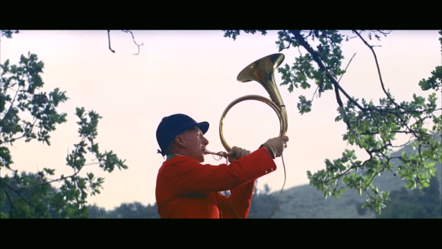 ms red fox hunting bugler  - bugle stock videos and b-roll footage