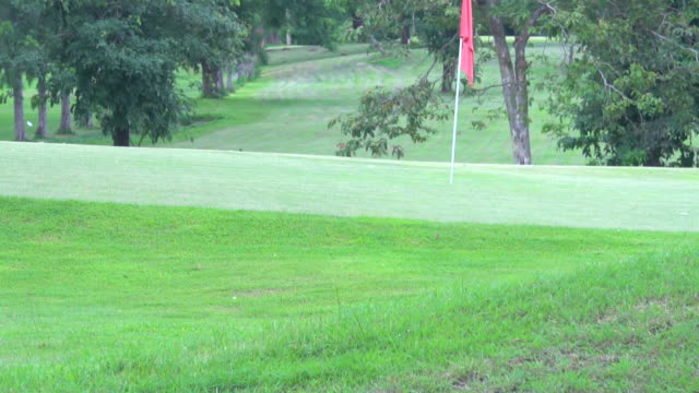 red golf hole flag blowing in wind on the green - golf flag stock videos and b-roll footage