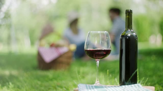 red grape and bottle of red wine with romantic couple in background in public park - picnic basket stock videos & royalty-free footage