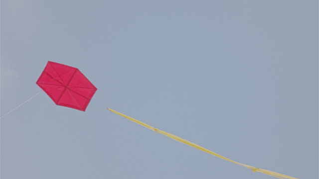 red kite in the sky - rotmilan stock-videos und b-roll-filmmaterial