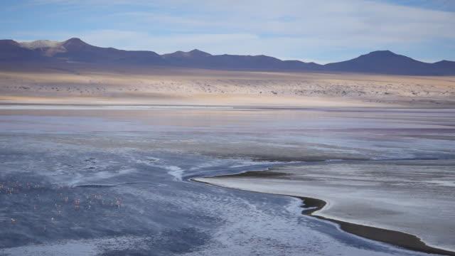 Red Lagune Atacama