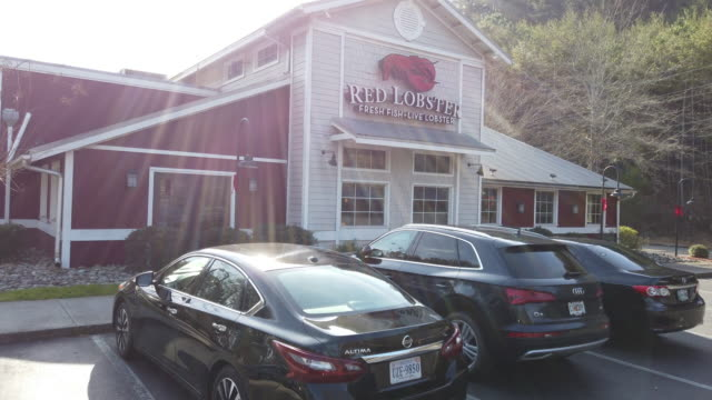 red lobster seafood restaurant in north georgia usa - lobster stock videos and b-roll footage