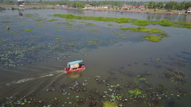 red lotus sea, udon thani. - red lake stock videos & royalty-free footage