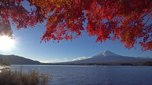 Red Maple leaves with mount Fuji