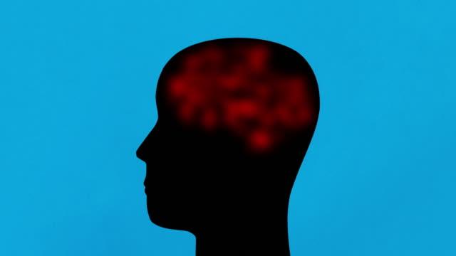vídeos y material grabado en eventos de stock de materia roja - corteza cerebral