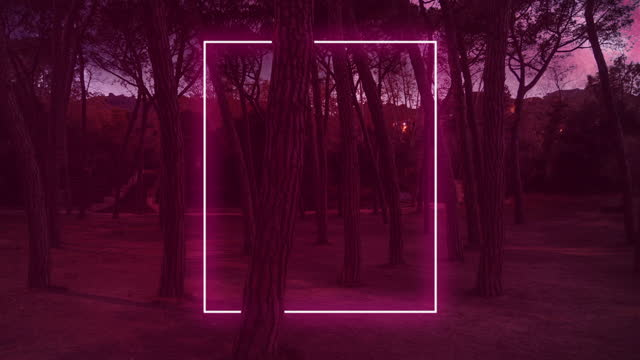 red neon rectangle installation glowing in the forest at night. - gate stock videos & royalty-free footage