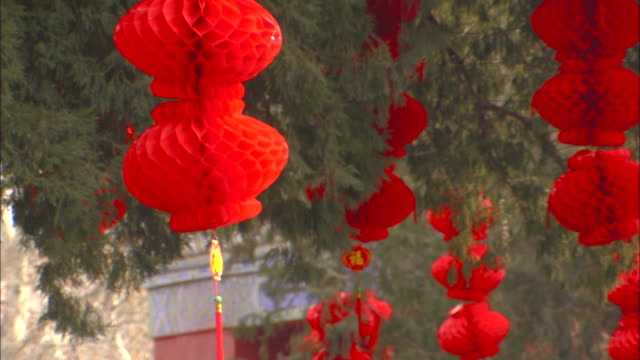 red paper lanterns hang from trees in beijing, china. - 胡同点の映像素材/bロール