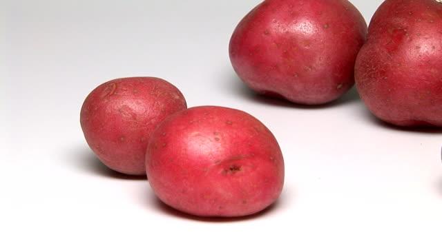 vidéos et rushes de red potatoes - pomme de terre rouge