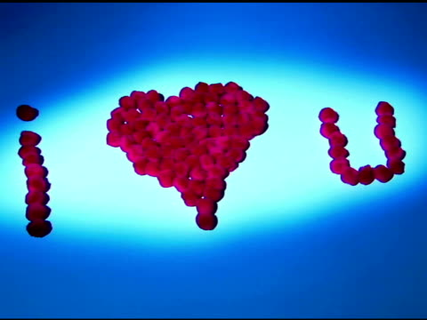 red puffballs in the phrase of ¿i love you¿ for valentine¿s day is blown away. - i love you stock videos & royalty-free footage
