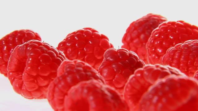cu, pan, red raspberries - raspberry stock videos & royalty-free footage