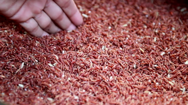 red rice - wholegrain stock videos & royalty-free footage