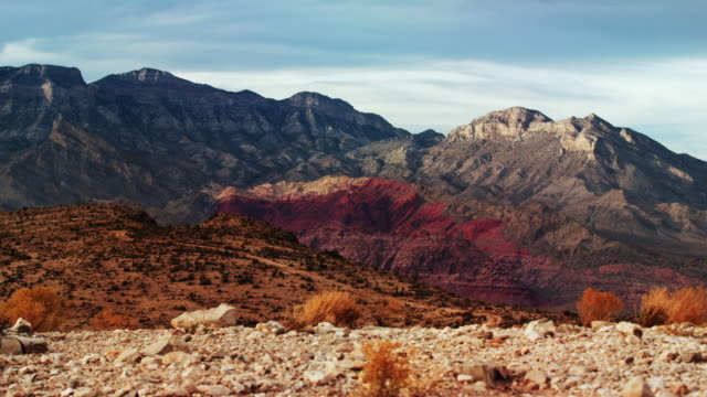 red rock canyon im westlichen las vegas, nevada - cactus stock-videos und b-roll-filmmaterial