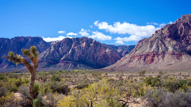 red rock canyon timelapse video - adobe after effects stock videos and b-roll footage
