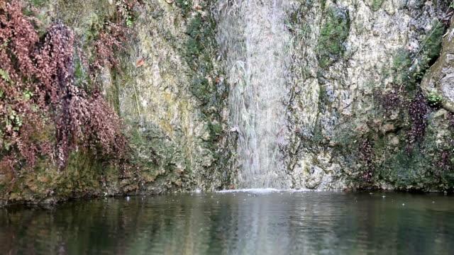 vidéos et rushes de red rock canyon cascade - red rocks