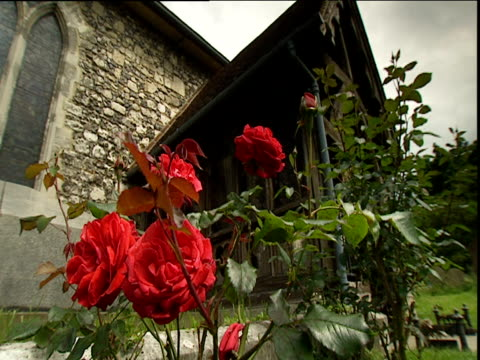 Red roses blowing in breeze next to church entrance Cookham