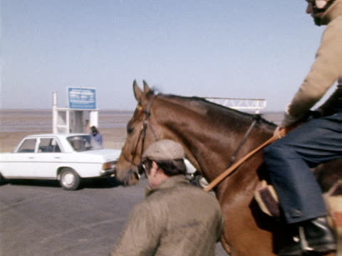 red rum is walked onto southport beach to train - southport england stock videos & royalty-free footage