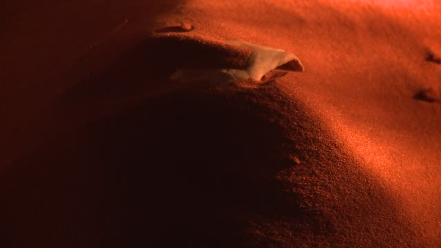vidéos et rushes de red sand blows across a dune to reveal a buried antelope skull. available in hd. - sable