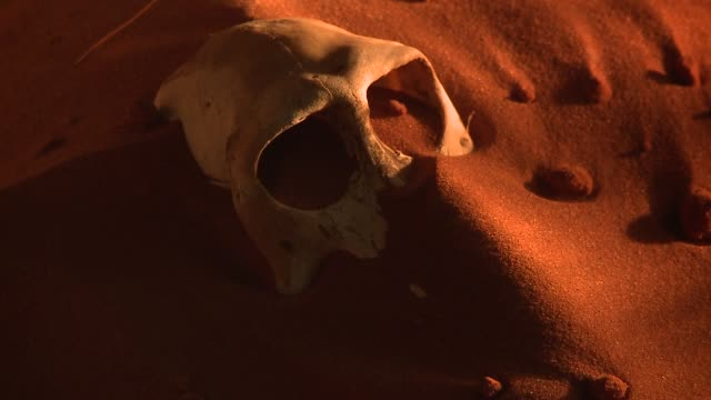 Red sand drifts across the desert and reveals a baboon skull. Available in HD.
