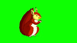 Red Squirrel Sitting and Eating Nuts. Chroma