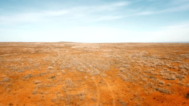 rote steppe - wildnis stock-videos und b-roll-filmmaterial