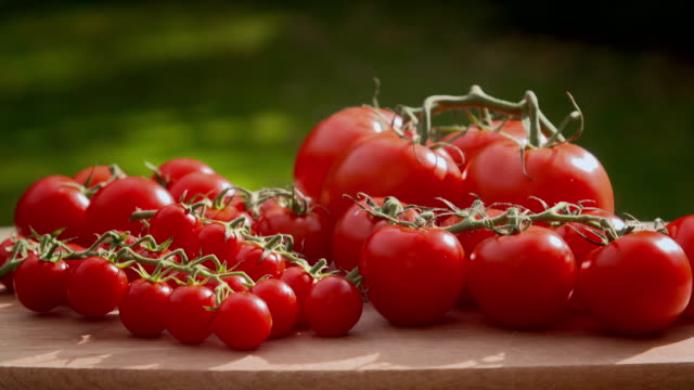 red tomatoes on a wooden board - tomato stock videos & royalty-free footage