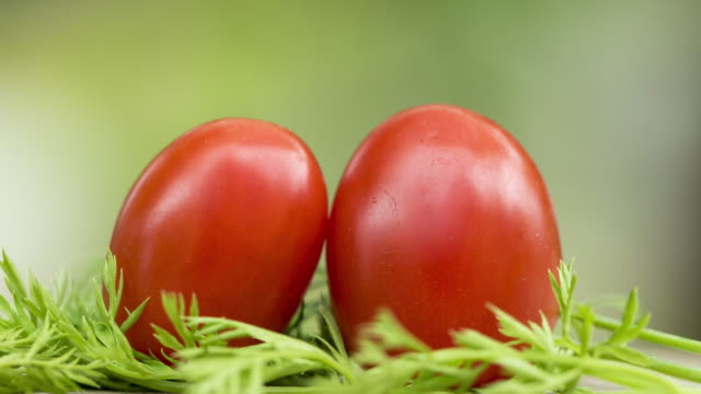 red tomatoes - savory food stock videos & royalty-free footage