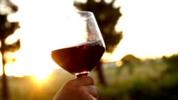 Red wine being swirled in wineglass in slow motion
