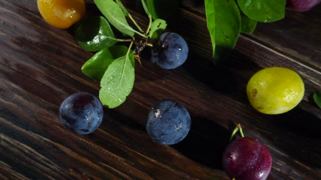 red, yellow and blue plums - plum stock videos & royalty-free footage
