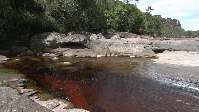 Reddish-Brown Colored River On Top Of Auyantepui In Guiana Highlands