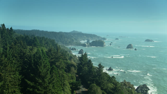 redwood trees and pacific ocean in del norte county, ca - pazifikküste stock-videos und b-roll-filmmaterial
