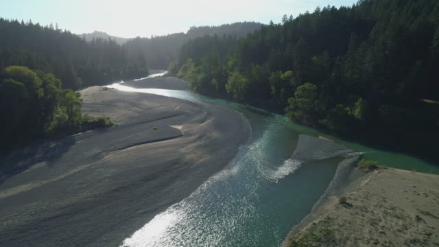 """redwoods along eel river nearby humboldt redwoods state park, and carl """"a"""" anderson redwoods natural preserve, california, in spring evening. aerial drone video with the panoramic camera motion. - coast redwood stock videos & royalty-free footage"""