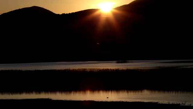 Reed at sunset in Karatas Lake, Burdur,Turkey