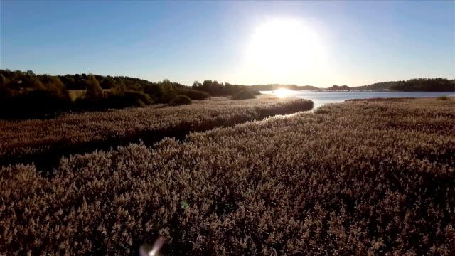 Reed Lake
