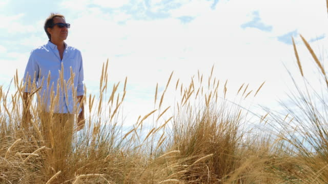 Reeds and dunes, man walking.