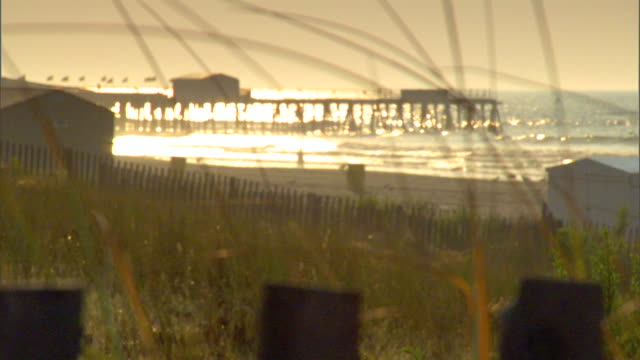 * cu reeds rack focus angled ws beach w/ silhouette of single person walking pier bg rolling atlantic ocean waves sunlight reflecting whiteblue... - orange new jersey stock videos & royalty-free footage