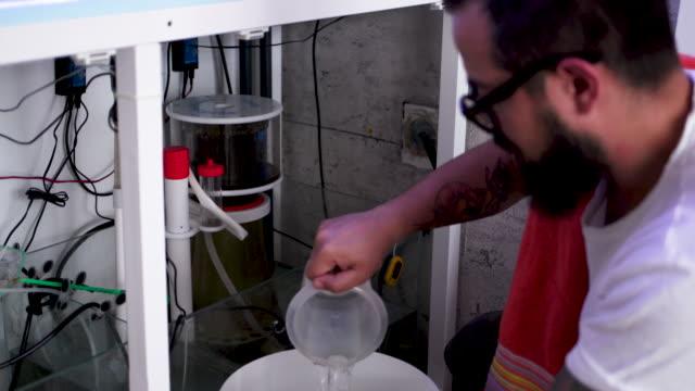 vídeos y material grabado en eventos de stock de mantenimiento del tanque de arrecife - acuario recinto para animales en cautiverio