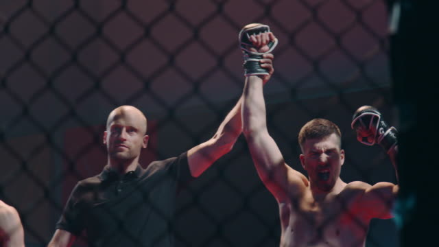 referee declairing the winner after the mma fight. inside octagon - octagon stock videos & royalty-free footage
