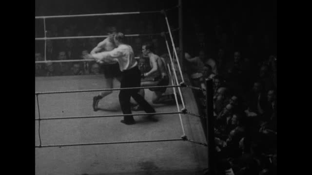 vídeos de stock, filmes e b-roll de referee raises scottish boxer charlie hill's arm in boxing ring after match and man shakes hill's hand / various shots of boxing match between hill... - comentarista