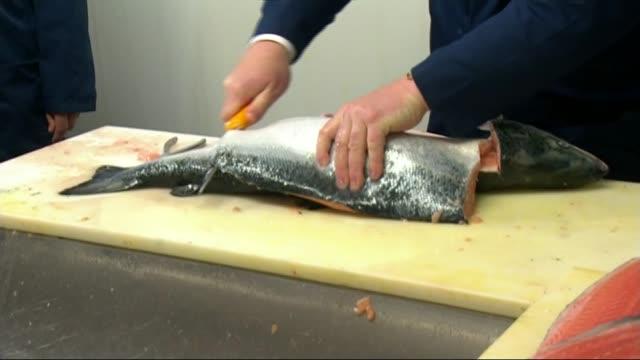 referendum campaign: latest developments; suffolk: lowestoft: lowestoft fish market: various of boris johnson mp cutting up fish - ローストフト点の映像素材/bロール
