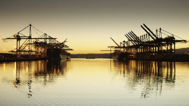 Reflected Container Cranes