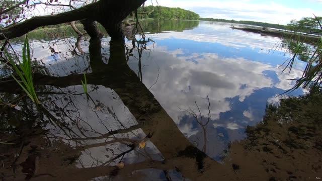 reflektierender himmel in einem see - wasseroberfläche stock-videos und b-roll-filmmaterial