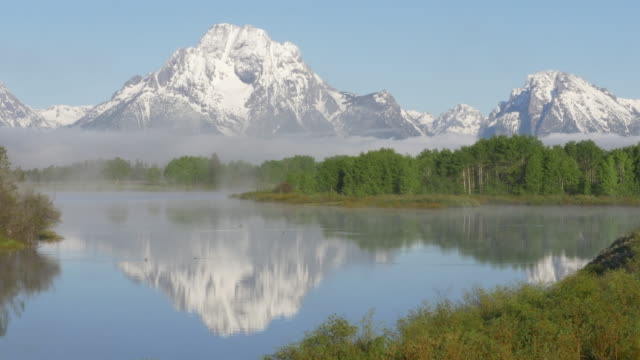 reflection and bird flying over the snake river at grand teton national park - teton range stock videos & royalty-free footage