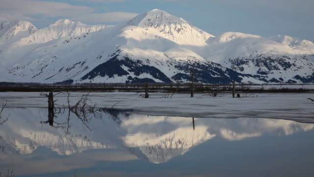 reflection in a pond during spring, chugach national forest, alaska. - chugach national forest stock videos & royalty-free footage