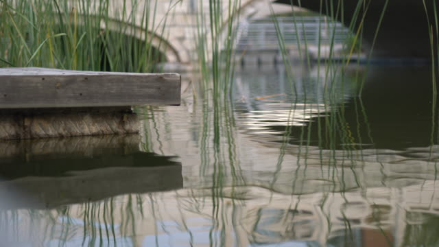 reflection in water: chinese arch bridge - classical chinese garden stock videos & royalty-free footage