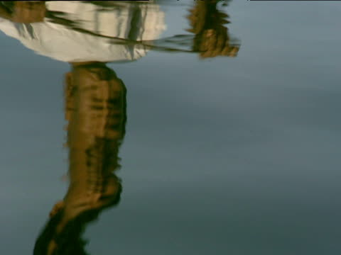 stockvideo's en b-roll-footage met reflection of man paddling canoe along river kerala - vervormd beeld