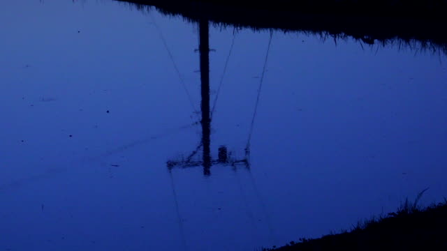 Reflection of power line in rice paddy