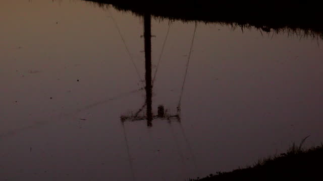 reflection of power line in rice paddy - plusphoto stock videos & royalty-free footage