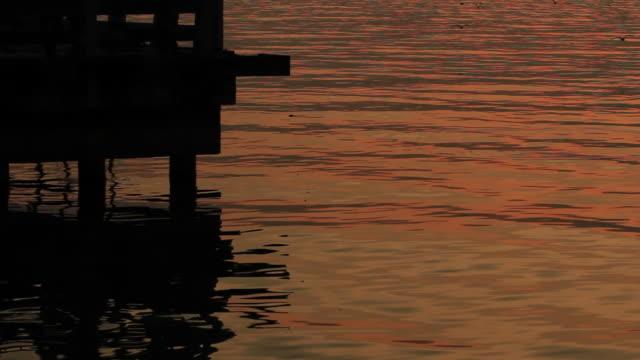 reflection of the fishing pier - utfällda vingar bildbanksvideor och videomaterial från bakom kulisserna